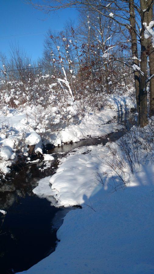 Brambleberry Meadow – Winter
