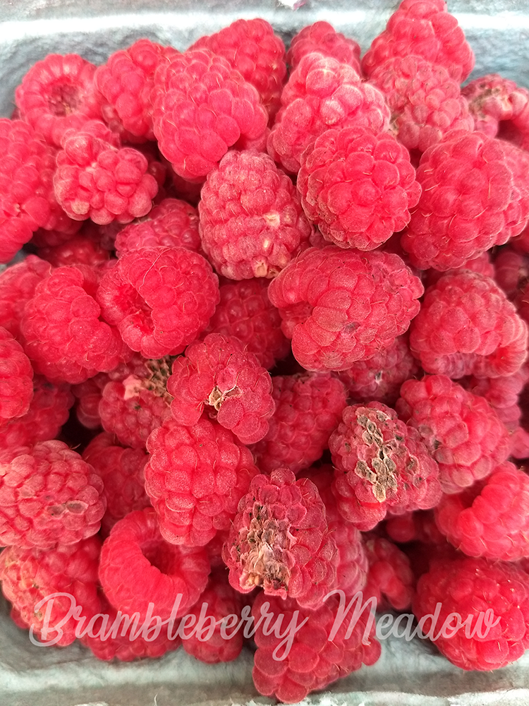Fresh raspberries, with damage